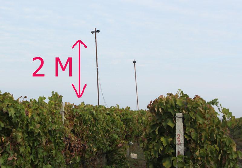 Отпугиватель птиц на винограднике отпугиватель собак на основе микросхемы ла-3