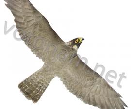 Визуальный отпугиватель птиц Хищник-1