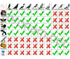 Комплект Динамический отпугиватель птиц
